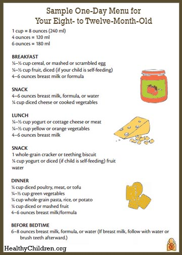 Sample menu for an 8 to 12 month old for 10 month old eating table food